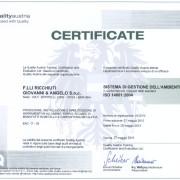 CERT ISO14001-2004